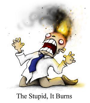 thestupiditburns