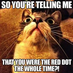 Captioned Cat